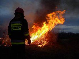 Pożary suchych traw