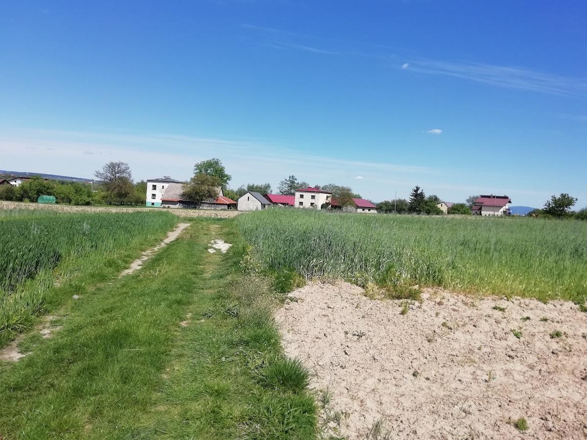 Rogi - okolica, gdzie powstać ma nadajnik sieci Play